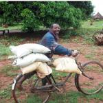 Mozambique farmer