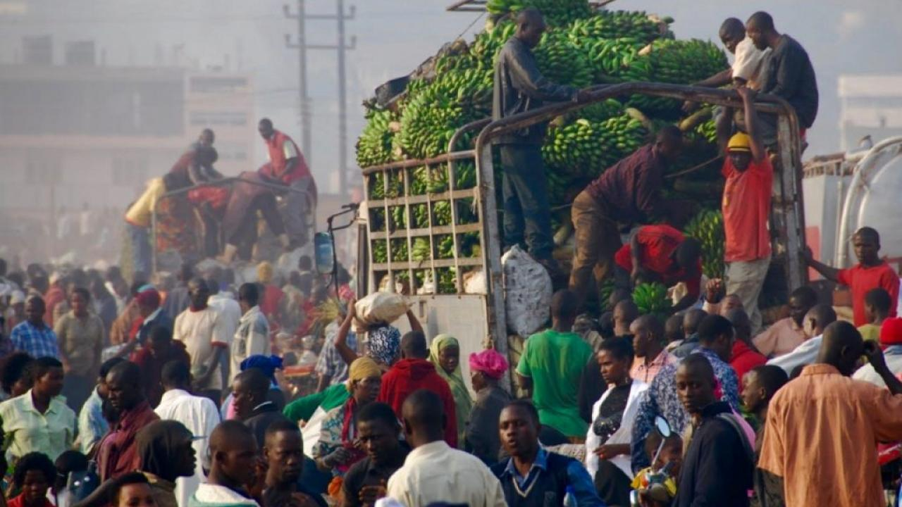 fruit market in Uganda