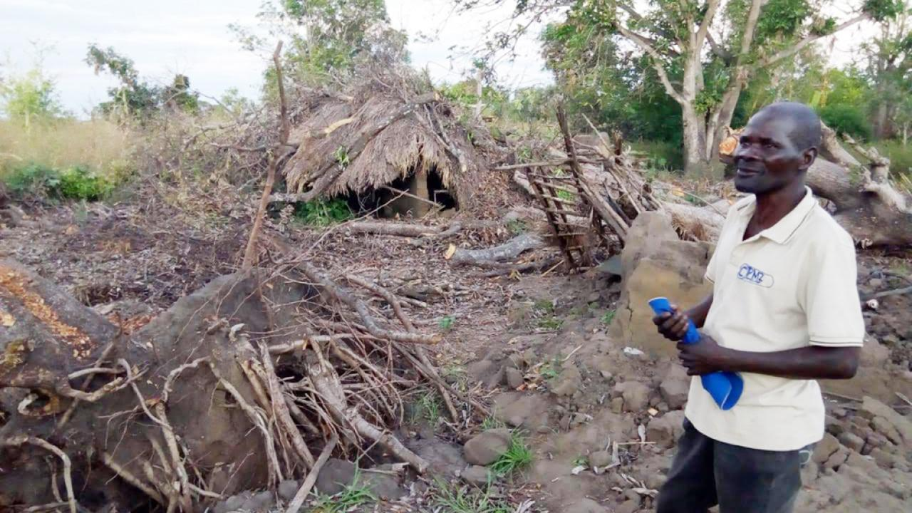 Cyclone Idai damage in Mozambique's Nhamatanda district