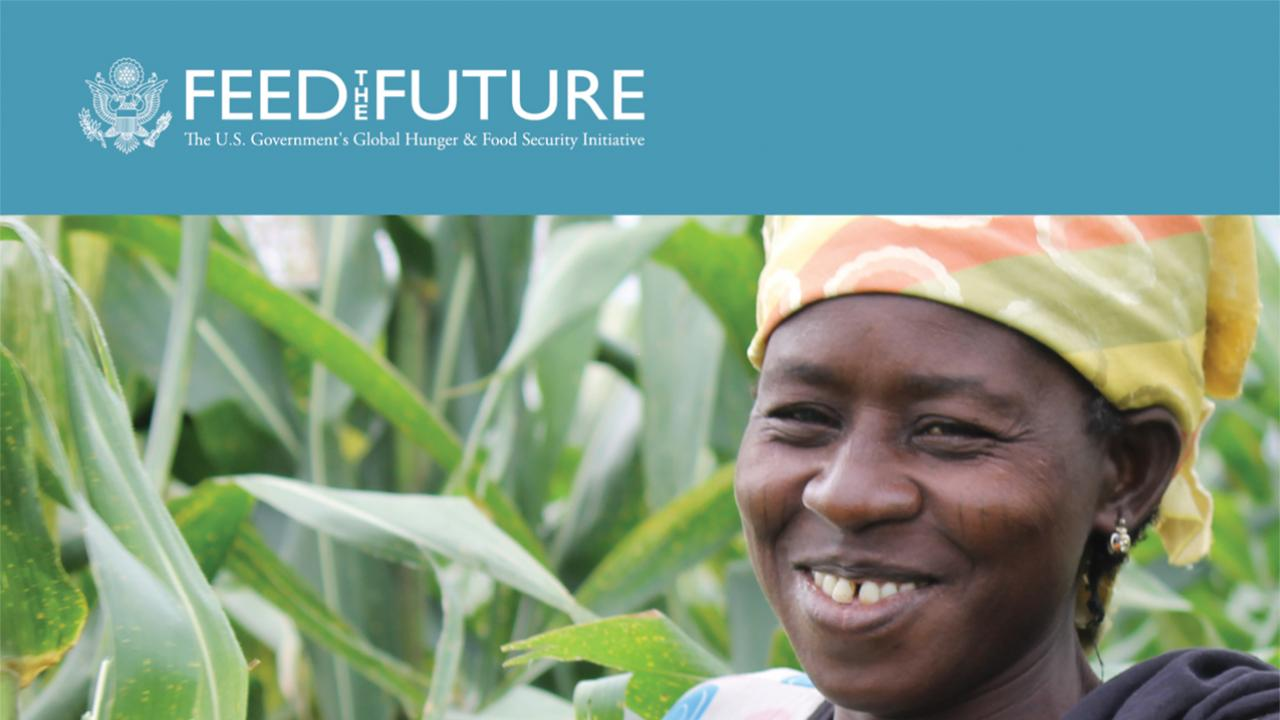 Feed the Future research strategy cover