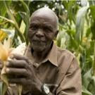 Farmer in Kenya
